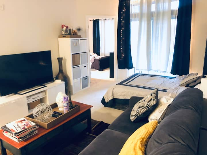 Beautiful 1Br. Apt Bethesda By Metro