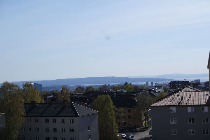 Awesome flat, 10 mins from downtown Oslo! - Oslo - Apartamento