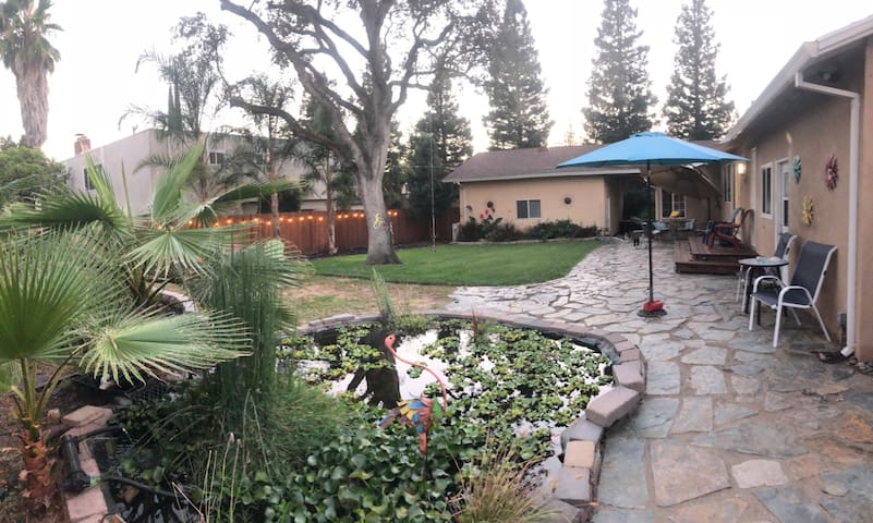 Backyard view with giant koi pond