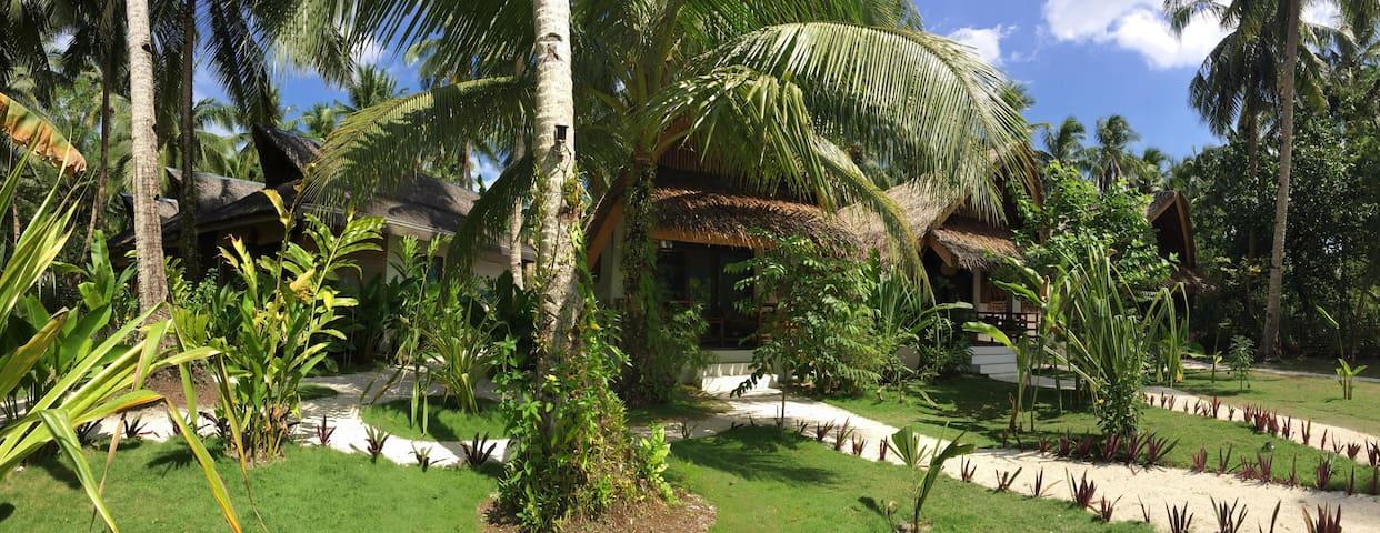 Beach Kubos and Beach houses