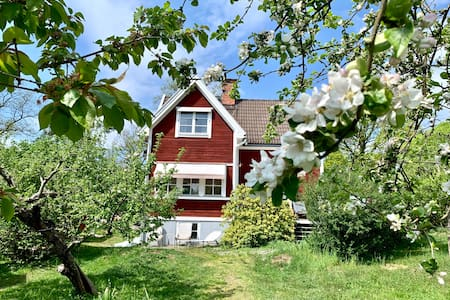 Wonderful house with big garden 10 min from city