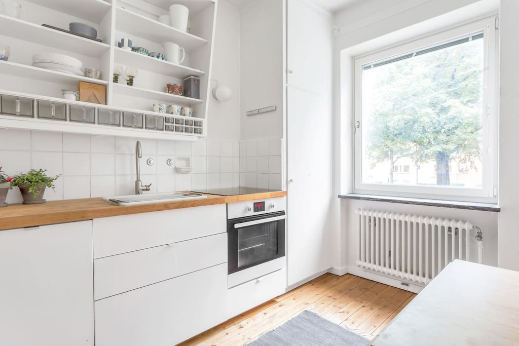 Kitchen with dishwasher and induction stove
