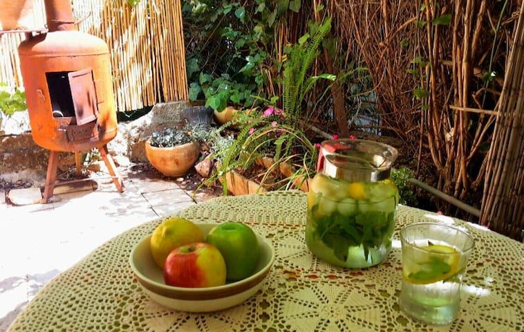Rehavya garden - ירושלים - Appartamento