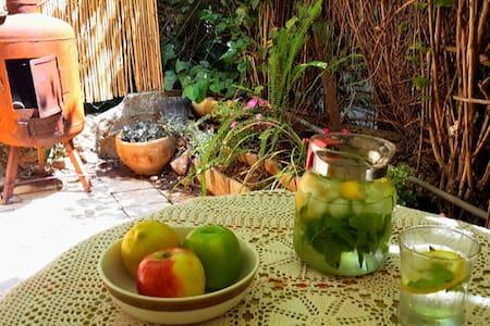 Rehavya garden - ירושלים - Wohnung