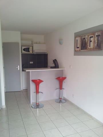STUDIO EASYLOFT CHAPONNAY 1 à 2 Personnes - Chaponnay - Apartment