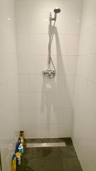 Modern shower has everything you need