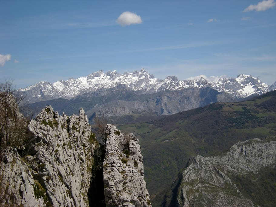 Vista Picos de Europa