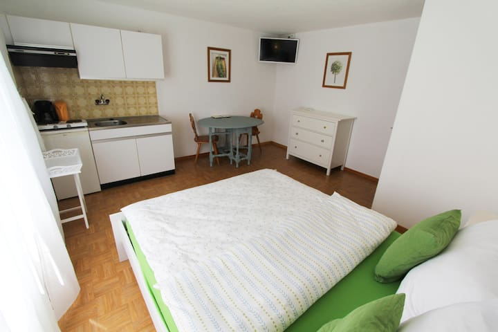 Eiger Apartment - *Spring Easter Escape* - Wilderswil - Appartement
