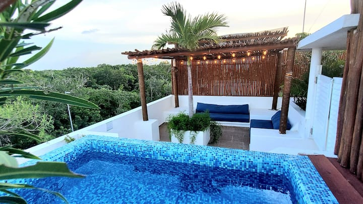 Aldea Zama w/Pent House plunge pool,near the beach