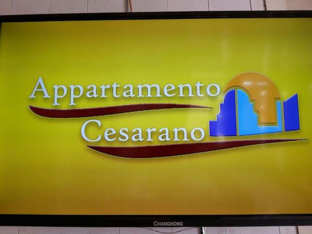 Appartamento Cesarano - Scafati - Wohnung