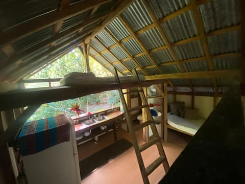 Jungle Cabina at Casas Colorado