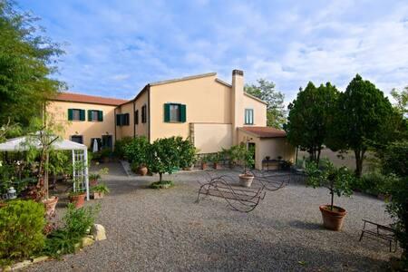 Podere San Martino - Haus Toskana - Castelnuovo della Misericordia - วิลล่า