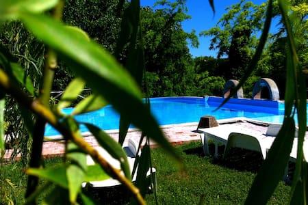 2-room flat Castagno with garden - Provincia di Pisa