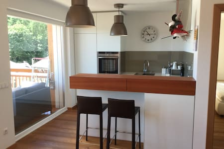 Zaberbach Luxury Mountain Apartment - Collalbo - Daire