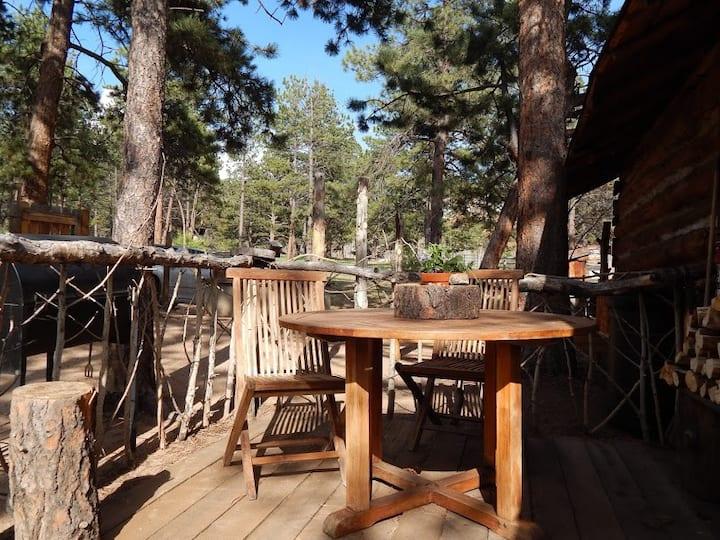 Idlewild Ridge Ranch Historic Cabin