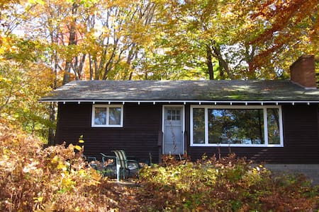 Lake Michigan Cottage - New Era - Cabin