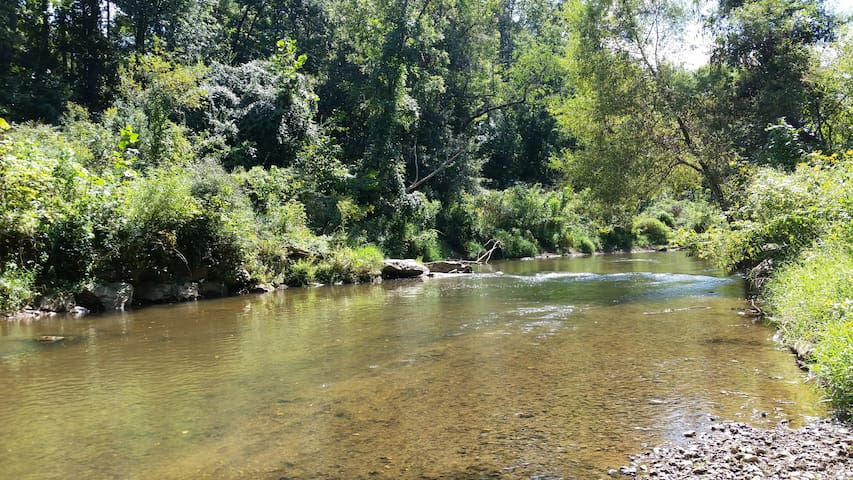 Down by the Riverside:  Country feel, W. Asheville