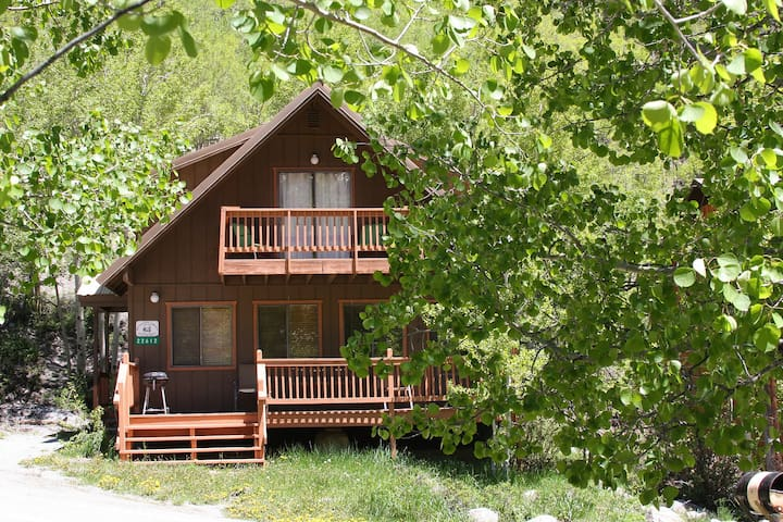 Mystic Cabin: Book now for Summer!