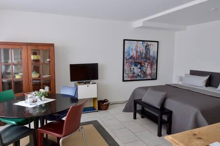Modernes 1-Zimmer-Apartement