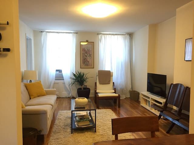 Sunny & Spacious in Carroll Gardens