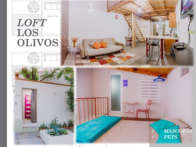 Agradable Estudio/loft  Los Olivos OK pets/mascota