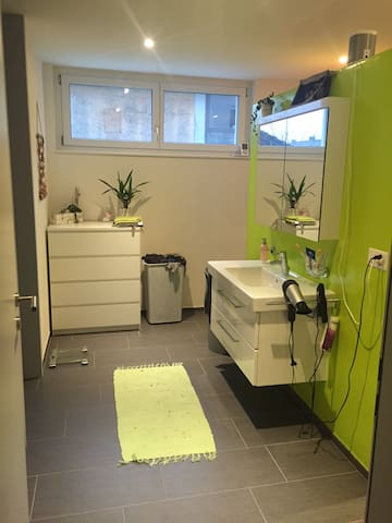 One Bathroom with Shower and Toilett