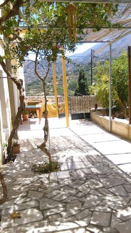 Christos @ Theodosia House - Lastros