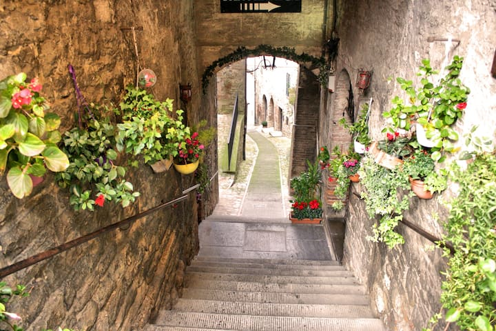 Charming and stylish 62sq apartment - Todi - Daire