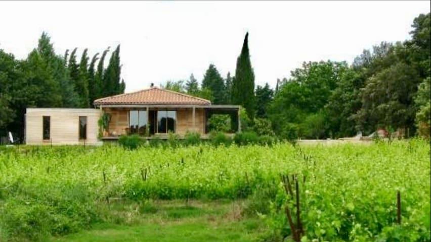 Maison dans les vignes au bord de la garrigue avec vue sur les cevennes .