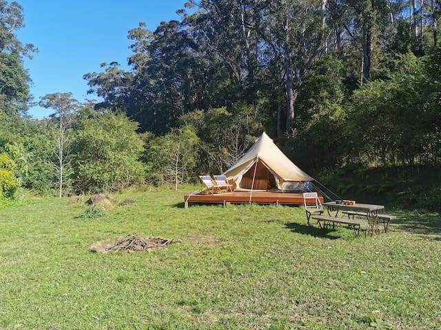 Bell Tent glamping amongst the bell birds.
