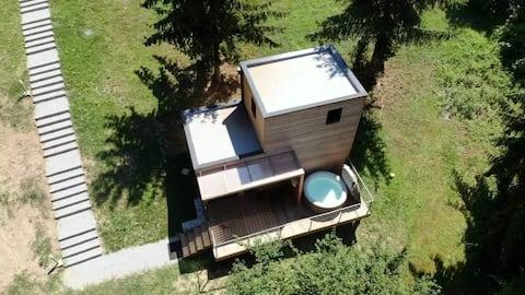 Les cottages de Charbonnières Les Bains 1