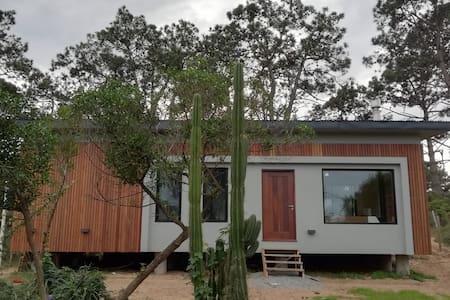 Casa Cactus