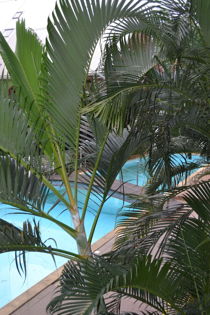 ❤❤❤ T2 en Centre-ville - Entre piscine & plage....