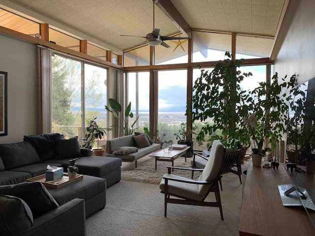 mid century modern with views