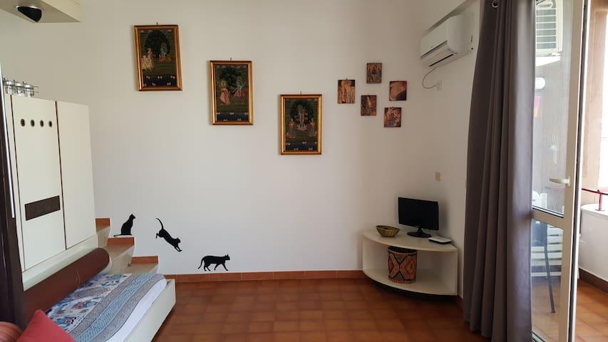 il soggiorno con i gattini