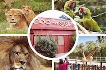 Le zoo des Sables d'Olonne est à quelques minutes à pied !