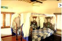 Room 5, 2 beds