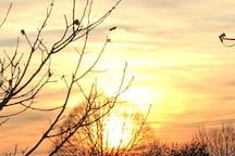Mooie zonsondergang in Wéris Couché de soleil à Wéris
