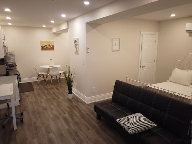 Spacious Bsmt Bachelor in St Clair West Village