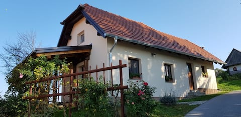 Idyllic apartment in Haloze near Ptuj