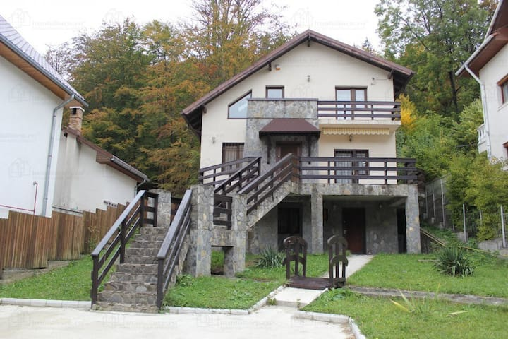 Wonderful mountain villa in Sinaia / Nice & cozy - Sinaia - Villa