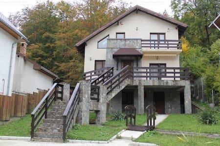 Wonderful mountain villa in Sinaia / Nice & cozy - Sinaia - Villa