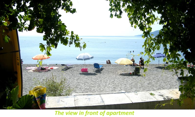 Apartment on the beach! - Paralio Astros - Apartemen