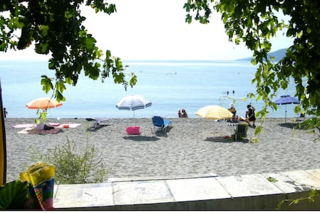 Apartment on the beach! - Paralio Astros - Wohnung