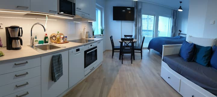 32m2 studio next to Logomo with own parking place
