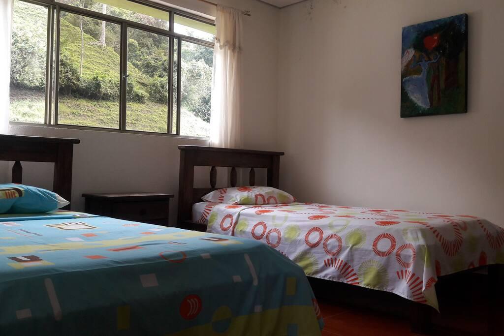 Habitacion con dos camas, ventilador, tv y baño privado.