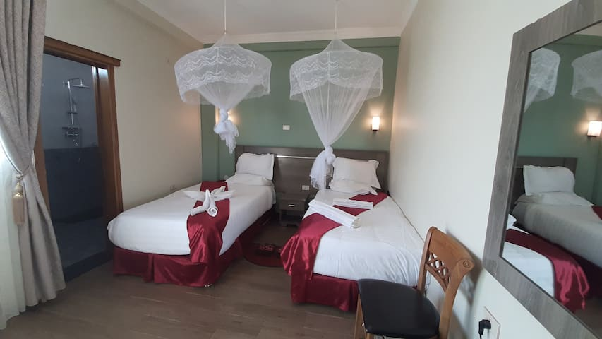 Teferi Mekonnen Hotel  Twin Bed Room