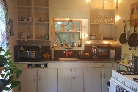 Cute Quirky House Close To Town - 산마르코스(San Marcos) - 단독주택