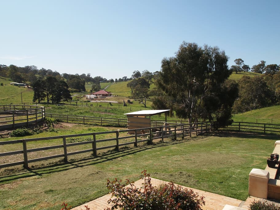 Rural views from B&B