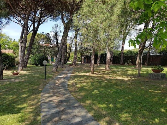SULLA SPIAGGIA !  Casa e grande parco.  VEDI FOTO!